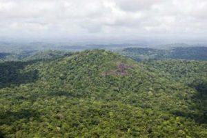 Tierras amazonía